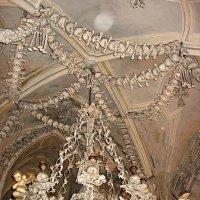 Люстра из костей и черепов :: Елена Павлова (Смолова)