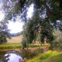 Река Ик. Башкортостан :: Олеся Парамонова