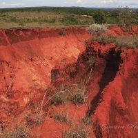 Оранжевый каньон :: Ольга Гурьянова