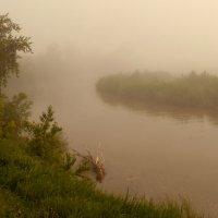 Туманным утром на реке :: Олег Дмитриев