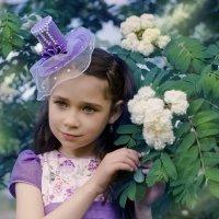Рябина цветет. :: Татьяна .............