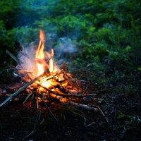 Костер в лесу :: Кирилл Козлов