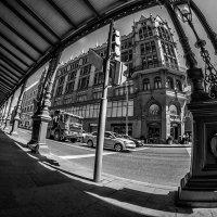 Такой пустяк - стоять у светофора... :: Ирина Данилова