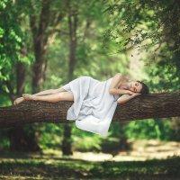 Лесной сон :: Валерий Худушин