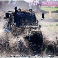 Т грязи не боятся :: Игорь Литвинов