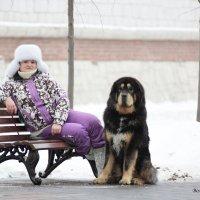 отдых :: Елена Волгина