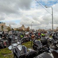 Союз мотоциклистов России :: Оксана Богачева