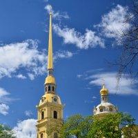 Петропавловский собор :: Николай Танаев