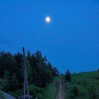 В лунном свете :: Валерий Симонов