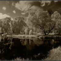Река Иордан.(близ Новоиерусалимского монастыря) :: Владимир Елкин