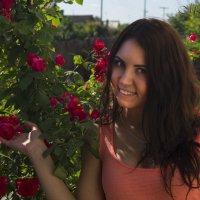 Розы :: Mishanya Moskovkin