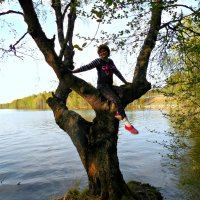 Русалка на ветвях сидит :: Геннадий Рублёв