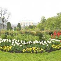 Екатерининский парк :: Елена Дацько