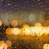 ...всю ночь шел дождь.../jupiter-9 f2/85mm :: Pasha Zhidkov