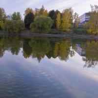 Большой городской пруд :: Роман Домнин