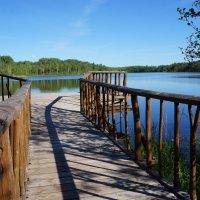 озеро :: Ксения