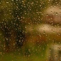 Дождь :: סּﮗRuslan HAIBIKE Sevastyanovסּﮗסּ