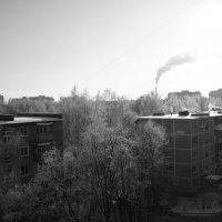 Суровые зимы. :: Екатерина Малышева