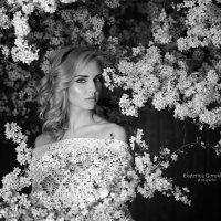 Yuliya :: Екатерина Горохова