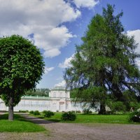 Оранжерея в графском парке. :: Марина Волкова
