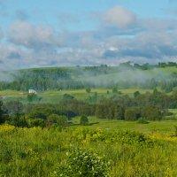 туман над р. Усолка. :: petyxov петухов