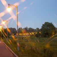 Прогулка по парку :: Роман Домнин