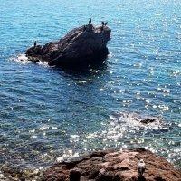 Адриатическое море :: Наталья Пономаренко