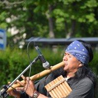 Индеец. этническая музыка :: Karlygash Khassenova