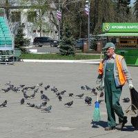 Ох уж эти голуби... :: Денис Быстров