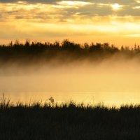 Утро туманное... :: Федор Чернышев