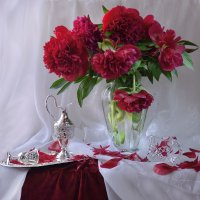 Шелками в бархатной красе... :: Валентина Колова