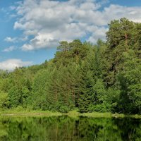 Озеро в Ботаническом саду :: Дмитрий Конев