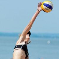 Волейбол так волейбол :: Павел Сущёнок