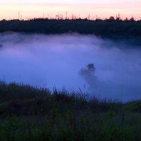Утро туманное... :: Валерий Лазарев