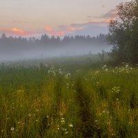 Вечерний туман после сильного дождя... :: Федор Кованский