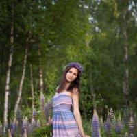 Люпиновая... :: Екатерина Overon