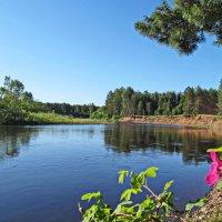 Свежим утром у реки :: Юрий Кузмицкас