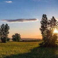 Лучи заходящего солнца :: Любовь Потеряхина