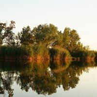 Рай для рыбаков в Запорожье :: Marina Marina