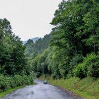 Дождливый день :: Alesia Avsievich