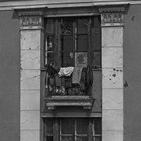 Эти окна дома напротив... :: Владимир Питерский