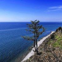 Байкальский простор :: Анатолий Иргл