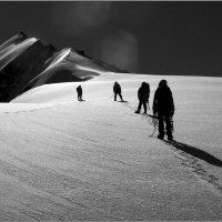 Черно-белый мир (в) :: Николай Кувшинов