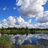 На озере. :: Антонина Гугаева