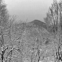 Cнег в Карпатах. :: Андрий Майковский