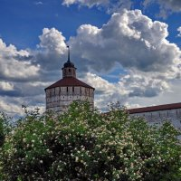 У стен монастыря :: Валерий Талашов