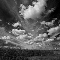 Облака в чб :: Владимир