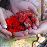 ждём малыша! больше тепла, красоты, витаминов... )) :: Райская птица Бородина