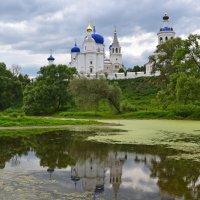 Свято-Боголюбский монастырь :: Наталья Левина