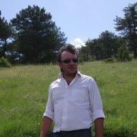 в лесу :: İsmail Arda arda